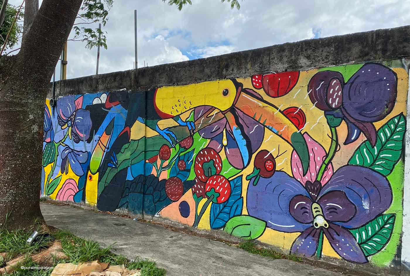 mural with toucan flying made by ryliuk
