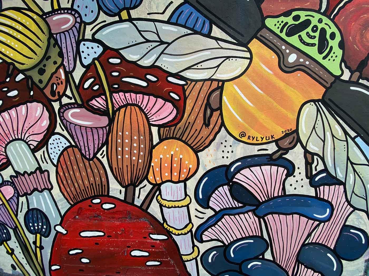 close up mushrooms mural of rylyuk